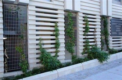 GALVANIZED STEEL GRILLES